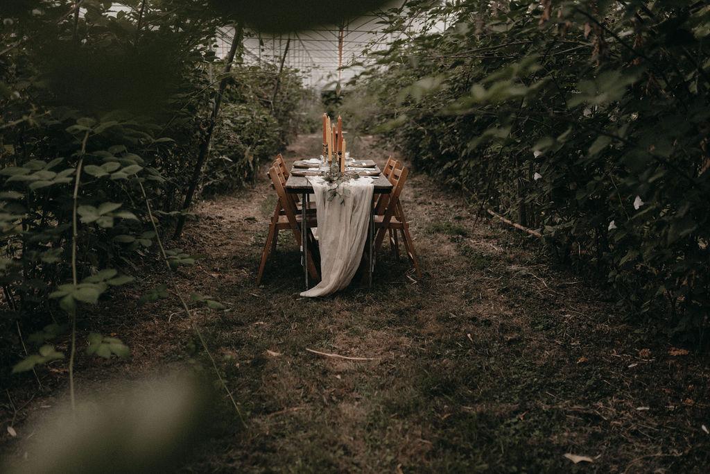 RENSKEZWAAN_PHOTOGRAPHER_BERRYKISSEDBOHOBRIDALSHOOT_2019_A&R